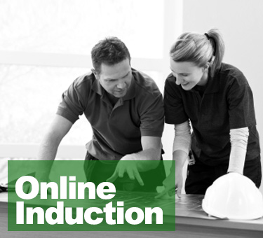 Online Induction